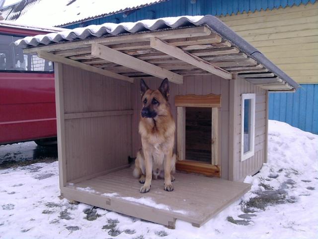 Строим будку для собак