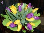 Тюльпаны к 8 марта в Минске, недорого