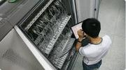 Установка и настройка любого сетевого оборудования,  АДМИНИСТРИРОВАНИЕ,