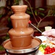 Шоколадный фонтан на Вашем празднике !