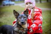 Бетти - в дар замечательная молодая собачка,  ищем дом
