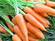Продам свежую морковь.