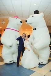 Большие Медведи панда на свадьбу день рождения встречу гостей