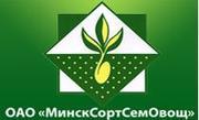 ОАО «МинскСортСемОвощ»