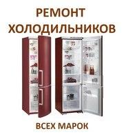 Мастер по ремонту холодильников. Опыт более 11 лет. Звоните