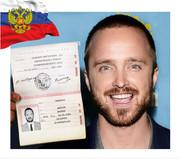 Получение гражданство РФ
