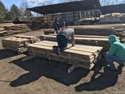 Доска из дуба необрезная сырая 12 куб срочно Минск