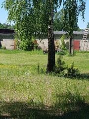 Столярное производство в Новоколосово